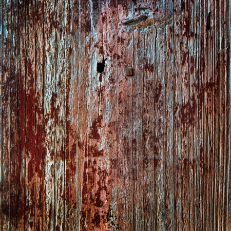 grung: old, grunge wood panels used as background.