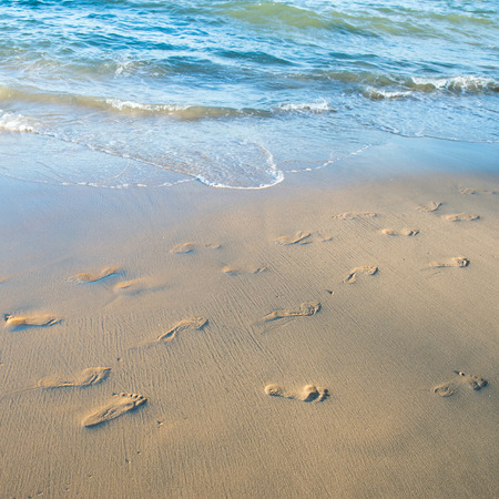 sandy feet: Footprints on the sand beach