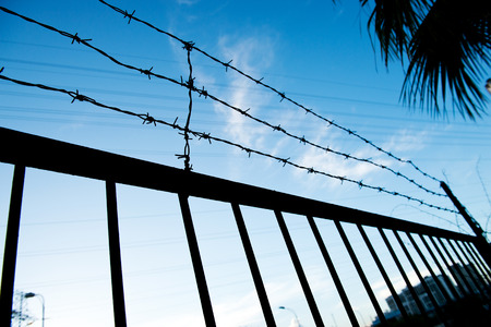 barbwire: wire fence isolated on blue sky.
