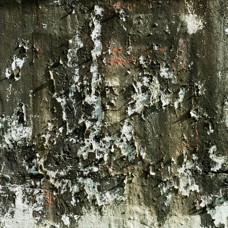 mouldy: old grunge concrete wall background.