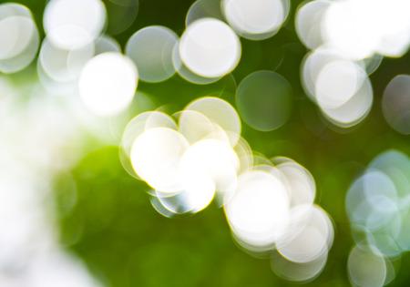natural green background with bokeh circles. photo