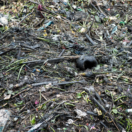 impure: Water pollution in river with trash.
