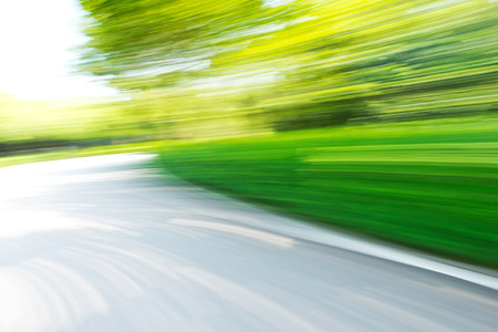 speedy: empty road in the jungle. motion blur