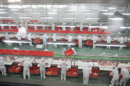 group of workers working in pork industry plant.