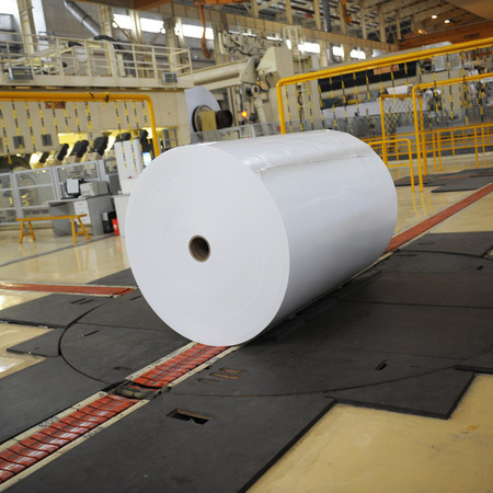 paper mill: Spools of paper in the workshop