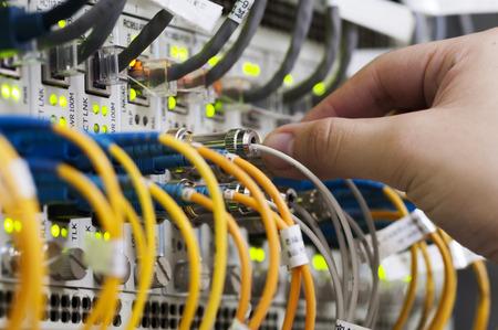 red informatica: Mujer de conectar los cables de red a los interruptores Foto de archivo