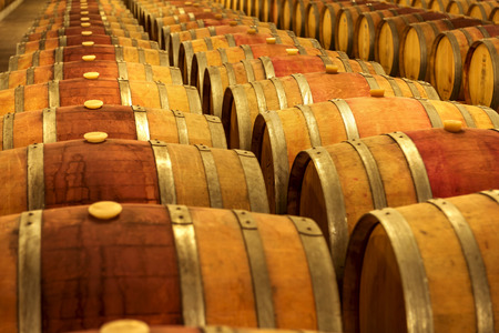 wineries: Wine barrels stacked in the cellar of the winery.