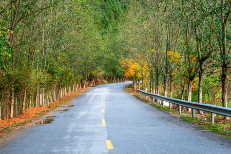 Asphalt road. Stock Photo