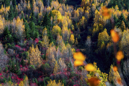 The Autumn at Yading Nature Reserve in Daocheng County ,China Stock Photo