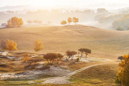 Autumn grazing scenery on Bashang Grassland in Wulanbutong Stock Photo