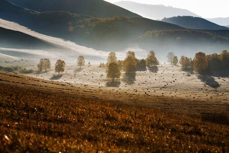 Autumn scenery on Bashang Grassland in Wulanbutong