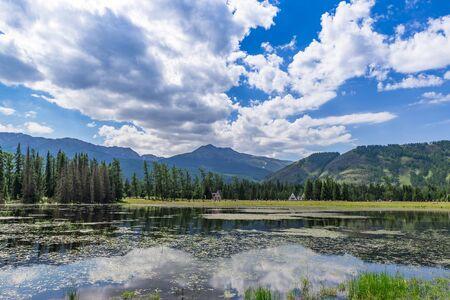 Summer scenery at Wolong Bay, Kanas scenic area, Xinjiang, China