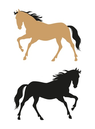 running horses on a white background  Vector