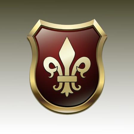blasone: Arms in un simbolico araldica