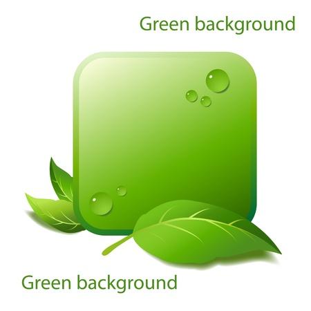 productos naturales: Dise�o de un elemento de fondo para productos naturales