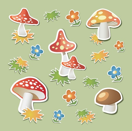 toadstool: Mushrooms in the form stickers on green background
