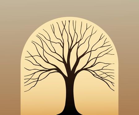 arbol genealógico: Símbolo del árbol en forma de la silueta de la hoja contra