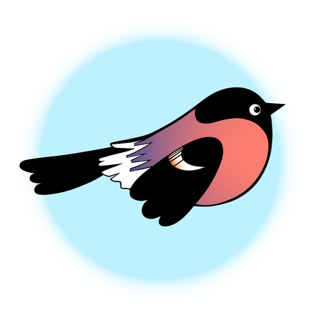 Bullfinch on blue background symbol vector Vector