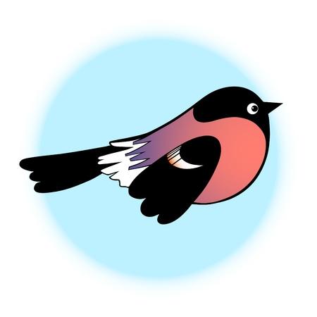 christmas robin: Bullfinch on blue background symbol vector