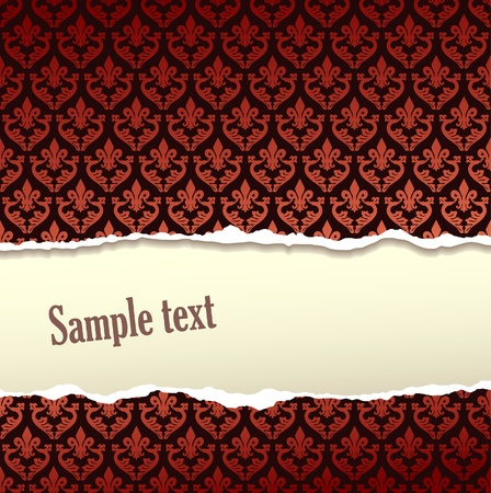 Tear paper on pattern  background Stock Vector - 13121064