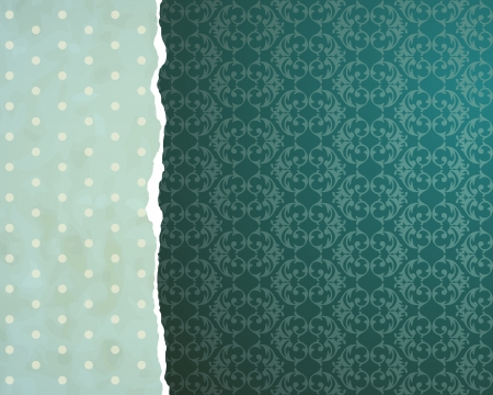 Tear paper on abstract  background Stock Vector - 13888014