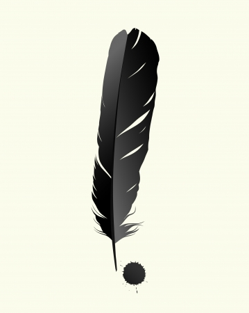 feather quill: Black birds feather on white background