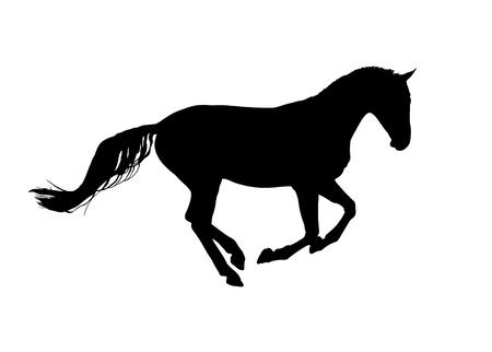 pedigree: Horse symbol vector