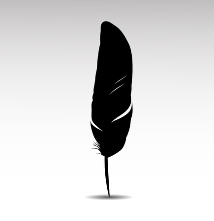 feather pen: Feather on white background vectr