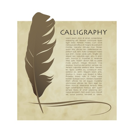 Feather calligraphic pen  background Stock Vector - 17329264