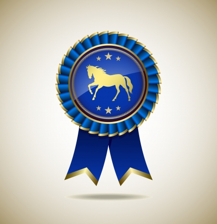 Award Rosette - Ribbon Icon