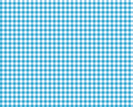 picnic cloth: blue checkered picnic tablecloth