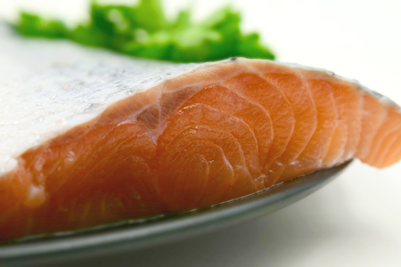 A raw fillet of salmon with its pink meat, silver skin and scales and some green parsley. Tilt-shift effect applied.