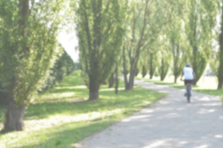 Defocused background of a road between green cypresses with a person on a bicycle in a sunny day. Intentionally blurred post production for bokeh effect.