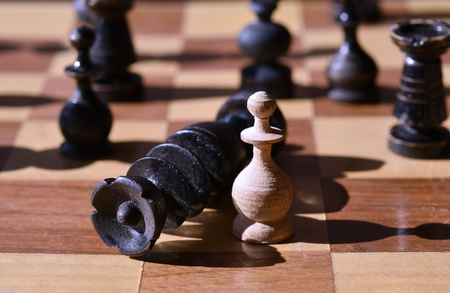 King is in checkmate by a pawn