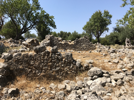 Ruins of the Ancient acropolis of Sami in a forest in Kefalonia in Greece.