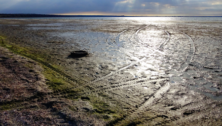 salinity: Muddy bank of the estuary at low tide, the sun reflected in the clouds