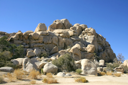 Joshua Tree National Park, Mojave Desert, California