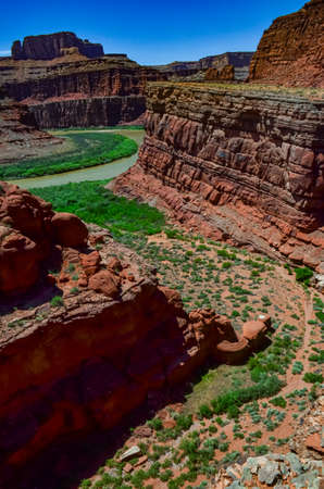 The Colorado Riverbed, overgrown with green vegetation. Canyonlands National Park is in Utah near Moab, US Zdjęcie Seryjne