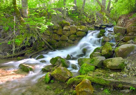 mooie trapsgewijze waterval in groen bos Stockfoto
