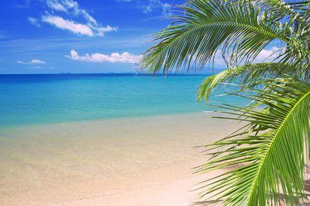beautiful tropical beach and sea Stock Photo - 6103026