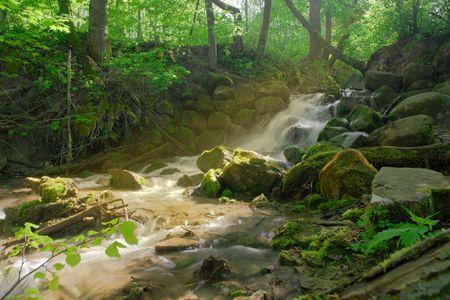 beautiful cascade waterfall in dark forest photo