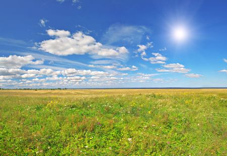 field under blue cloudy sky whit sun Stock Photo - 6103060
