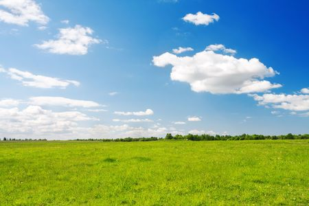 Green field under blue cloudy sky Stock Photo - 6251659