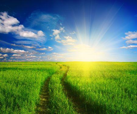 pfad: Feldweg in Gras und Sonnenuntergang  Lizenzfreie Bilder