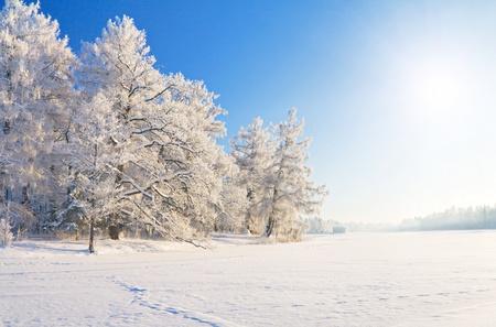 winter park in sneeuw
