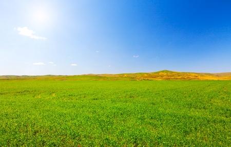 Green hill under blue cloudy sky whit sun photo
