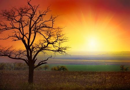 beautiful landscape and sunrise photo