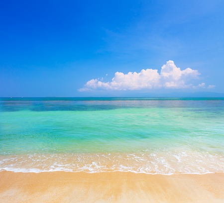 beach and tropical sea photo