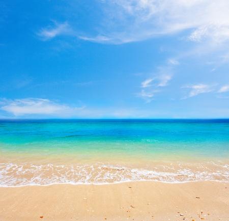 strand en het prachtige tropische zee