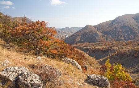 autumn mountains photo